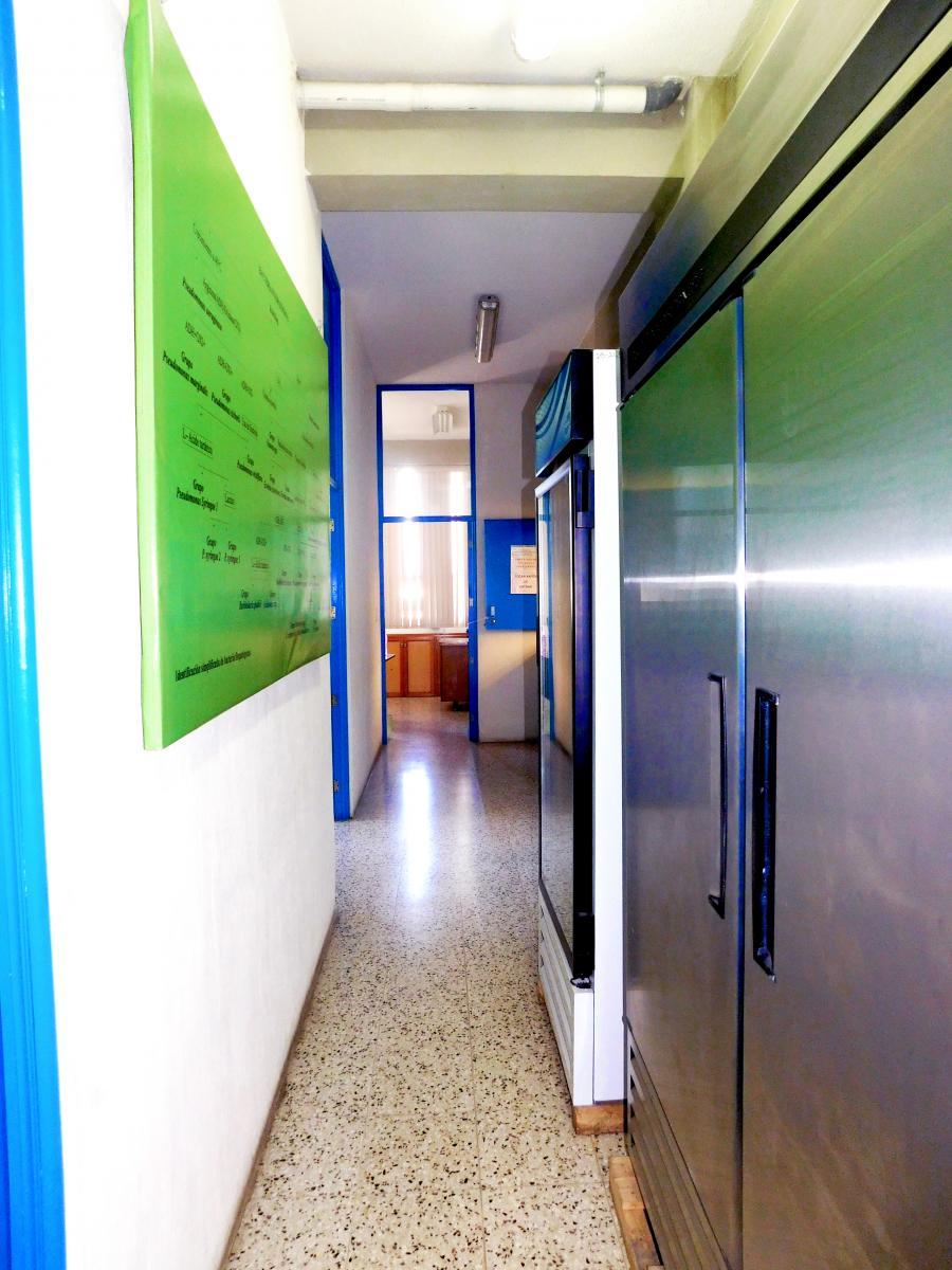 Centro de Diagnóstico Parasitológico